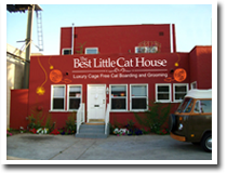 The Best Little Cat House in Los Angeles